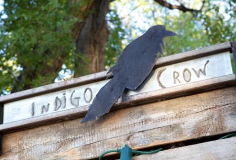 Indigo-Crow-Gabriella-Marks-photography-01